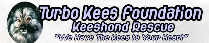 Turbo Kees Foundation